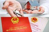 Quy trình, thủ tục cấp chứng chỉ định giá đất mới nhất tại Thanh Hóa
