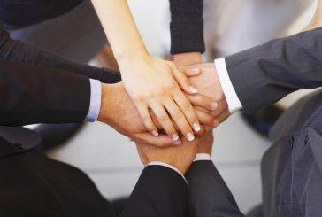 Hướng dẫn cách bảo vệ nhãn hiệu của doanh nghiệp theo luật sở hữu trí tuệ